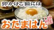 卵かけご飯には「おたまはん」